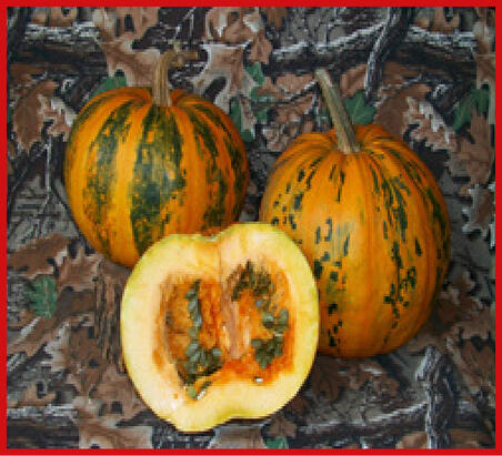 Pumpkins whole